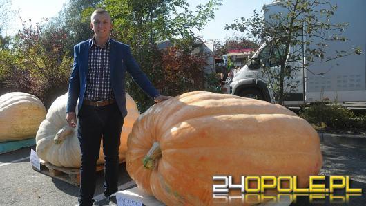839,6 kilogramowa dynia Matylda pobiła rekord Polski