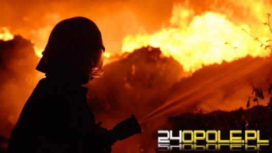 Pożar składowiska śmieci w Dąbrowie Niemodlińskiej. W akcji ponad 30 jednostek straży