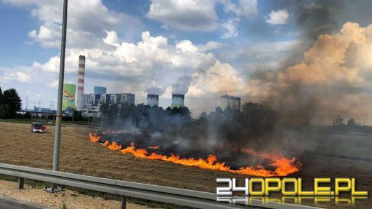 Szybka reakcja lokalnych OSP zapobiegła rozprzestrzenieniu się ognia w Borkach