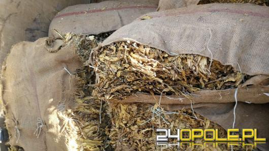Poszukiwany listem gończym w padł z ponad 2 tonami tytoniu
