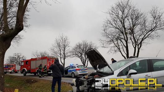 Ślisko na drodze! Zderzenie pojazdów pomiędzy Suchą a Strzelcami Opolskimi
