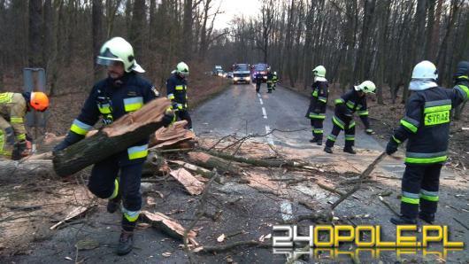Blisko 500 interwencji strażaków w ciągu ostatniej doby!