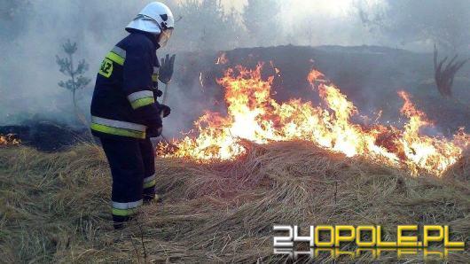 KWP Opole: Nie puszczaj wiosny z dymem
