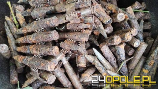Blisko 300 sztuk niewybuchów na terenie pałacu w Dobrej
