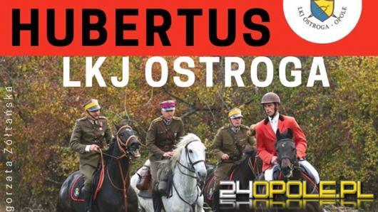 Już dziś gonitwa za lisem w LKJ Ostroga