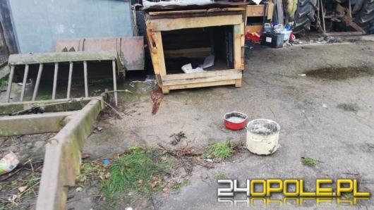 Inspektorzy opolskiego TOZ-u pokonali ponad 46 tysięcy kilometrów niosąc pomoc