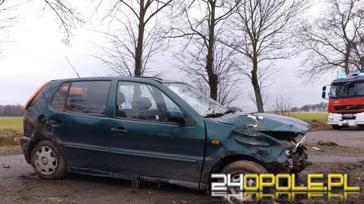 Kierowca uderzył w znak, potem w drzewo i wypadł na drogę. Był pijany