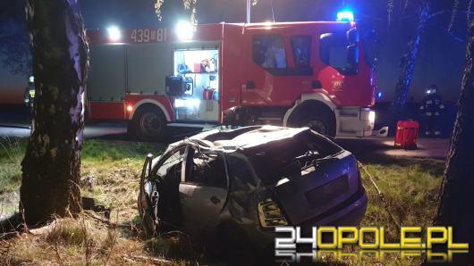 Powiat kluczborski: Kierujący Skodą wypadł z drogi i uderzył w drzewo. Był pijany