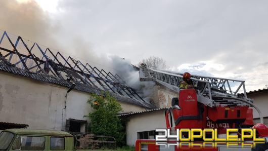 Pożar budynku gospodarczego w Złotogłowicach. Na miejscu 11 zastępów straży