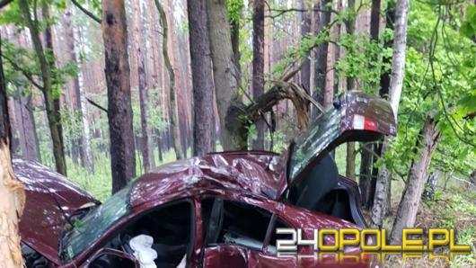 Kierujący Seatem wypadł z drogi i uderzył w drzewo