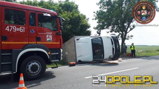 Kierowca auta dostawczego stracił panowanie nad pojazdem i zakończył podróż w rowie
