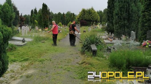 Zakład Komunalny rozpoczął koszenie. O teren wokół nagrobków muszą zadbać ich opiekunowie