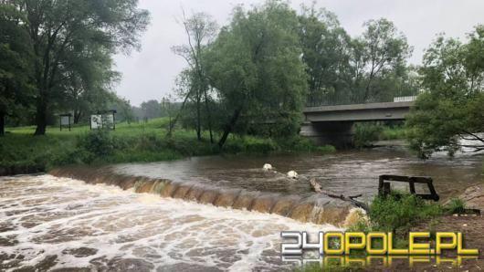 Wypadek na Małej Panwi w gminie Kolonowskie. Dwie osoby wypadły z kajaka