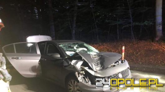 Drzewo spadło na podróżujące samochodem dwie osoby