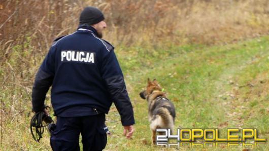 Rozbój w banku na terenie Opola-Czarnowąsów. Trwa obława policji