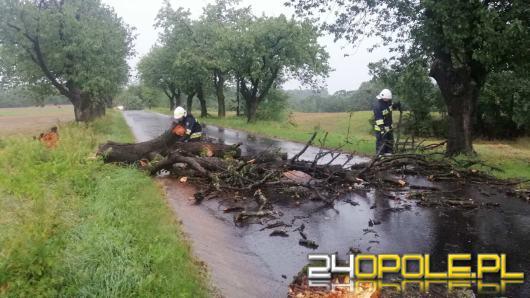 Strażacy odnotowali ponad 50 interwencji w związku z burzami na Opolszczyźnie