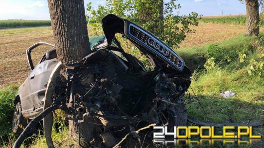 Wypadek w Wawelnie pod Opolem. Audi uderzyło w drzewo