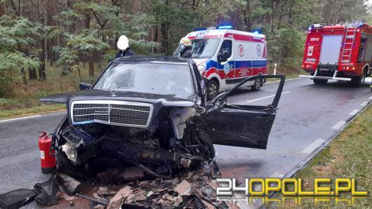 Wypadek na DW 463 Krasiejów - Kolonowskie