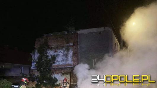 Samochód spłonął w Lewinie Brzeskim. Policja sprawdza czy doszło do podpalenia