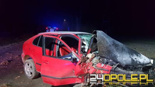 Kierowca stracił panowanie nad pojazdem i uderzył w drzewo. Niebezpiecznie na drogach