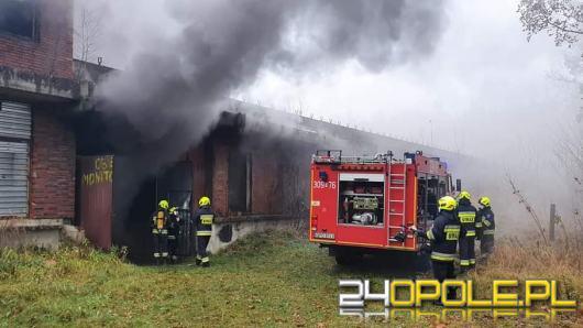 Pożar w Ozimku. Płonie piwnica obiektu basenowego