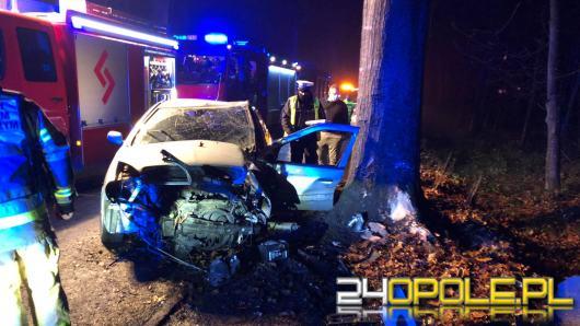 Kierowca omijał sarnę i uderzył w drzewo. Został zabrany do szpitala