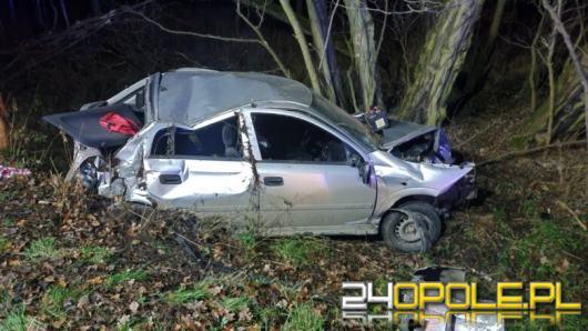 Nietrzeźwy kierowca spowodował wypadek w powiecie brzeskim