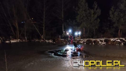 Akcja strażaków na stawie w Boroszowie. Pod koniem załamał się lód