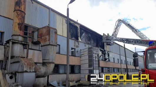 Ponad 3 godziny strażacy gasili płonącą halę produkcyjną w Brzegu