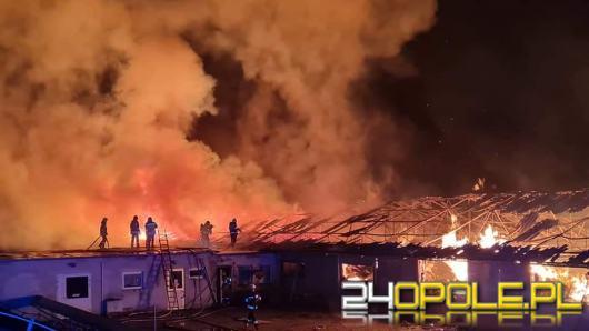 Strażacy nadal walczą z dogaszaniem pożaru na fermie we Włostowej