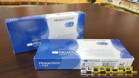 Testy na przeciwciała Covid-19 z Biedronki. Sprawdziliśmy jak działają