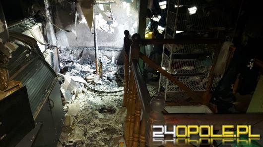 Pożar w obiekcie handlowym w Kędzierzynie-Koźlu
