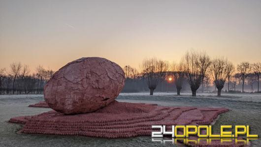 Belgijska organizacja szuka potomków zmarłego żołnierza z Kędzierzyna-Koźla