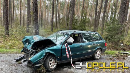 Kierowca Audi uderzył w drzewo i uciekł z miejsca wypadku