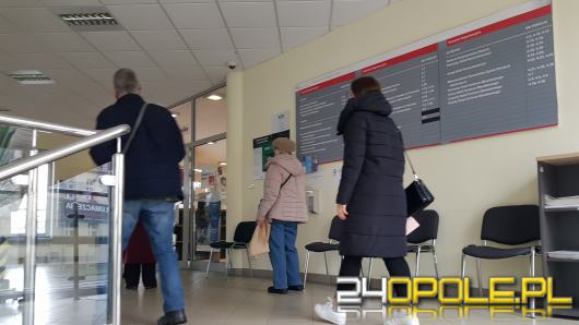 To ostatnie dni na rozliczenie się z fiskusem. Jak zostawić 1 procent podatku w Opolu?
