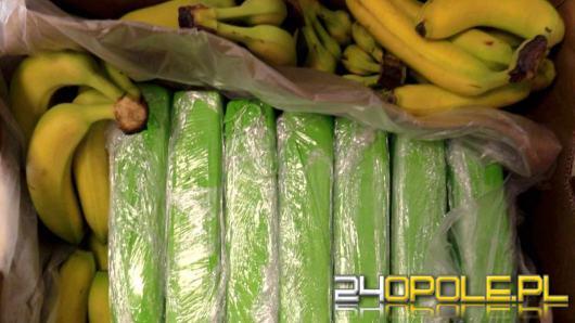 160 kg kokainy w bananach. Narkotyki trafiły do polskich sklepów