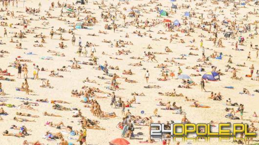 Eksperci wskazali, kiedy jechać na wakacje, żeby uniknąć tłoku