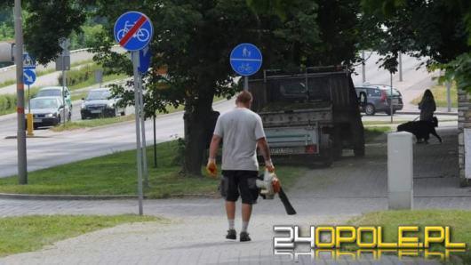 """W Opolu """"sprząta"""" się chodniki dmuchawami spalinowymi - bo """"można"""""""