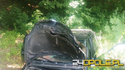 Wypadek w powiecie nyskim. Kierowca wjechał w drzewo