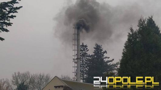 Opolskie zoo przestanie truć powietrze. Znalazły się pieniądze na wymianę ogrzewania