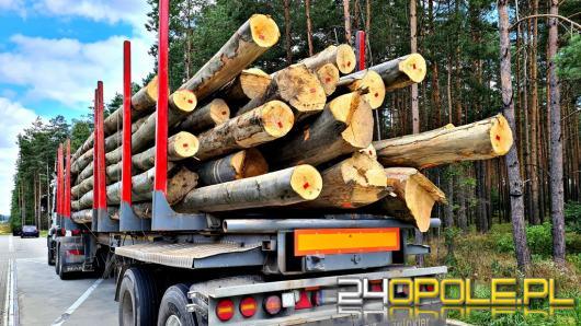 Ciągłe nieprawidłowości przy przewozie drewna