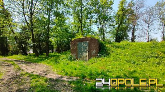 Rusza rewitalizacja zabytkowego parku