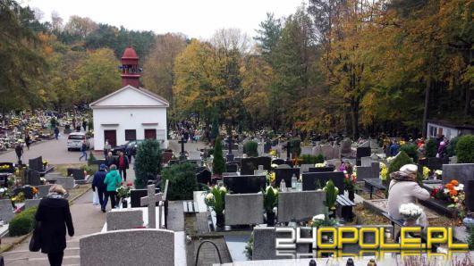 Zniczodzielnia. Coraz częstszy widok na polskich cmentarzach